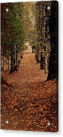 The Long Way Home Acrylic Print by Jacquin