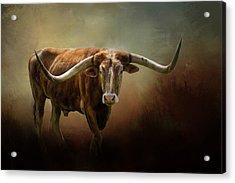 The Longhorn Acrylic Print
