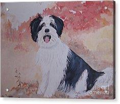 The Loyal Royal Dog. Acrylic Print