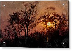 The Madness Of Twilight Acrylic Print