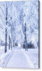 The Magic Of Winter 6 Acrylic Print