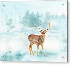 Acrylic Print featuring the painting The Magic Of Winter  by Colleen Taylor
