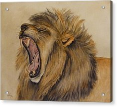 The Majestic Roar Acrylic Print by Kelly Mills