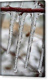 The Makings Of Winter Acrylic Print by Debra Straub