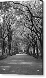 The Mall In Central Park And Poets Walk Acrylic Print by Christopher Kirby