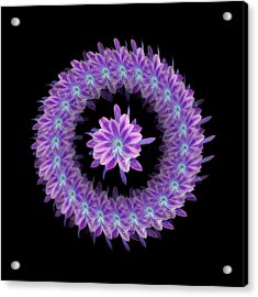 The Mandala Of Purple Tropical Flower Acrylic Print by Jacqueline Migell