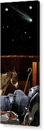 The Manger Acrylic Print by Julie Rodriguez Jones