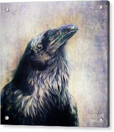 The Many Shades Of Black Acrylic Print by Priska Wettstein