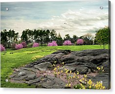 Acrylic Print featuring the photograph The Meadow Beyond by Jessica Jenney