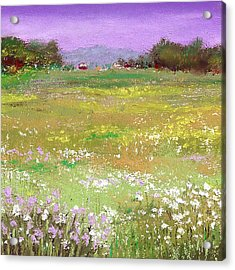 The Meadow Acrylic Print by David Patterson