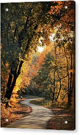 The Meandering Path Acrylic Print by Jessica Jenney