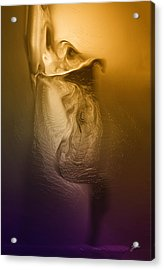 The Metamorphosis  Acrylic Print