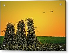 The Migration Of Summer Acrylic Print