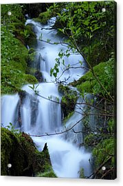 The Misty Brook Acrylic Print