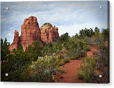 The Mitten A Formal Portrait Acrylic Print by Dan Turner