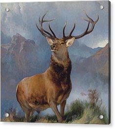 The Monarch Of The Glen Acrylic Print