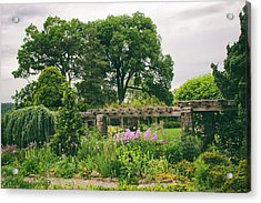 The Monocot Garden Acrylic Print by Jessica Jenney