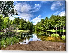 Acrylic Print featuring the photograph The Moose River At Covewood by David Patterson