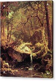 The Mountain Brook Acrylic Print