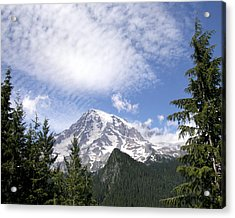 The Mountain  Mt Rainier  Washington Acrylic Print by Michael Bessler