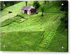 The Mower Acrylic Print by Emanuel Tanjala