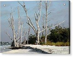 The Natural Beach Acrylic Print by Rosalie Scanlon