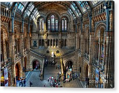 The Natural History Museum London Uk Acrylic Print