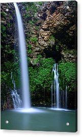 The Natural World Acrylic Print