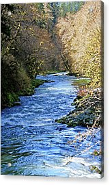 The Nestucca River Acrylic Print by Margaret Hood