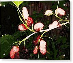 Acrylic Print featuring the digital art The New Mulberries by Winsome Gunning