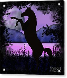 The Night Of The Unicorn Acrylic Print