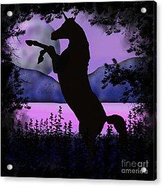 The Night Of The Unicorn Acrylic Print