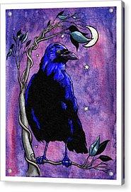 The Night Raven Acrylic Print by Baird Hoffmire