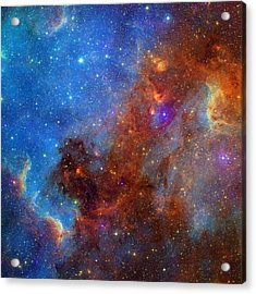 Acrylic Print featuring the photograph The North America Nebula In Different Lights by NASA JPL - Caltech