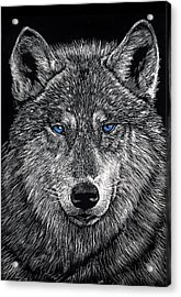 The Obligitory Wolf Acrylic Print