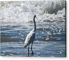 Egret And The Waves Acrylic Print