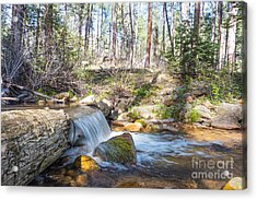 Acrylic Print featuring the photograph The Old Creek Falls by Anthony Citro