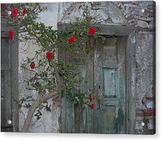 The Old Door And The Rose Bush Acrylic Print by Wilhelm Terrada