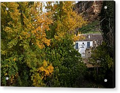 The Old Flour Mill And Elm Trees Acrylic Print by Panoramic Images