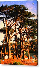 The Old Grove At The Ranch At Sunset . 40d4531 . Painterly Acrylic Print by Wingsdomain Art and Photography