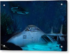 The Old Guard For The Tomcat Acrylic Print by Mark Vizcarra