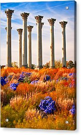 The Old Guards Acrylic Print by Bernard Chen