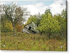 The Old Homestead And Orchard Acrylic Print by Michael Peychich