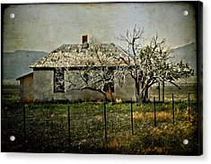 The Old House Acrylic Print by Jill Smith