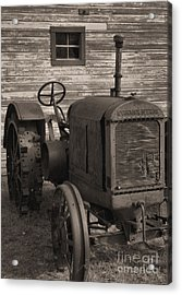 The Old Mule  Acrylic Print by Richard Rizzo