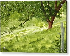 The Old Oak Tree Acrylic Print