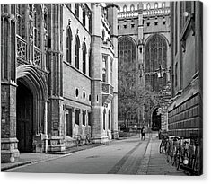 Acrylic Print featuring the photograph The Old Schools University Offices Cambridge by Gill Billington