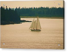 The Old Schooner Acrylic Print by Dennis Curry