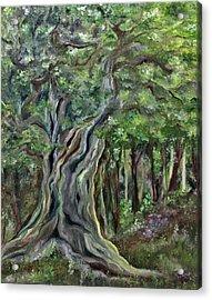 The Om Tree Acrylic Print