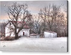 The Onion Snow Acrylic Print by Lori Deiter